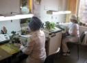 Lucrătorii medicali renunță la profesie din cauza salariilor mici